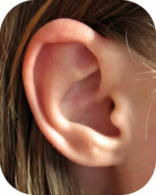 Ear pictures